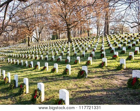 Graves In The Arlington Cemetery