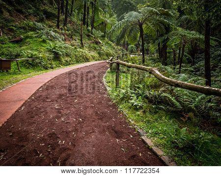 Pathway to Caldeira Velha