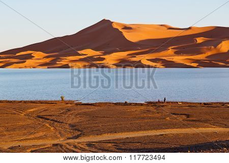 Sunshine In The Lake    Desert   Morocco Sand And     Dune