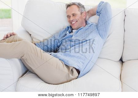 Happy man relaxing on the couch in the living room