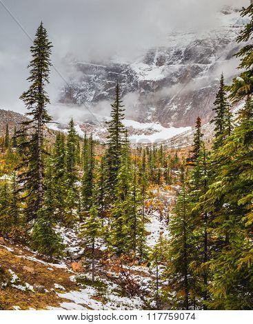 Mount Edith Cavell. Cold start of autumn in Jasper National Park. Snow fell in September