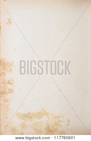 Vintage Background Of Mold Made Yellowed Paper