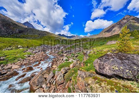 Mountain Stream Summer Sunny Day . Alpine Tundra