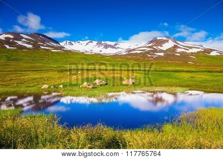 The fields overgrown with fresh green grass. Summer Iceland. The hills are covered with snow and are reflected in a small lake