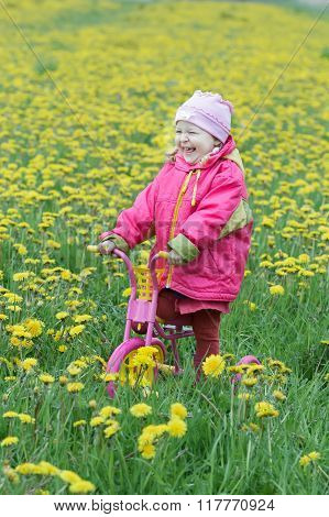 Laughing toddler girl standing at spring flowering dandelions meadow on kids pink and yellow tricycl