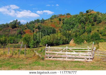 Traditional rural garden in the Romanian Carpathians, Europe