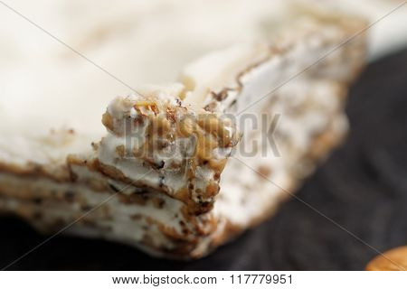 Goat cheese with mold, closeup on crust
