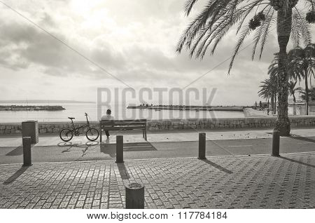 Man Rests On A Bench