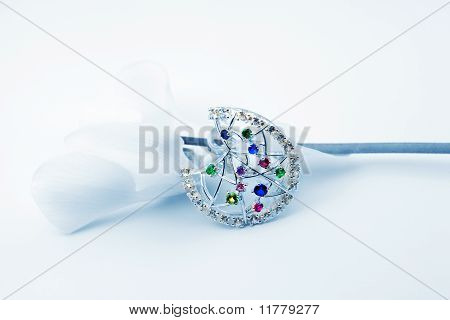 Elegant Female Jewelry