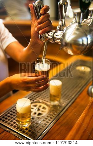 Barman Pours Beer Into Glasses For Its Tasting