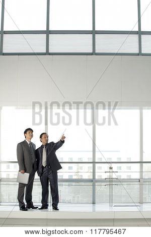 Businessmen Planning New Office