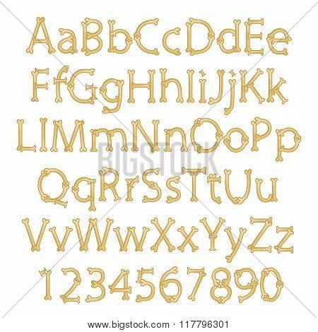 Dinosaur Bone Alphabet in Vector Format