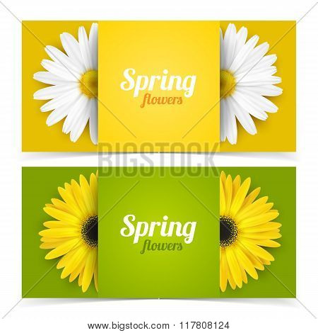 Flowers and frame for text.