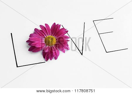 Inscription love with pink flower on white background