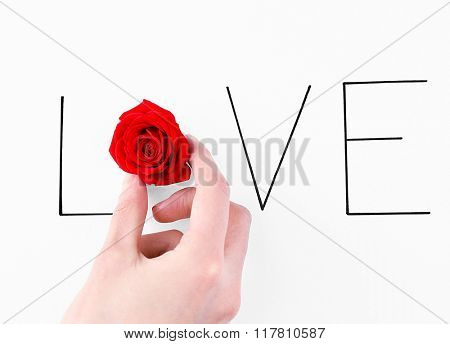 Inscription love with red rose and hand on white background