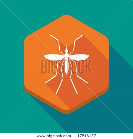 Zika Virus Bearer Mosquito  In A Hexagon