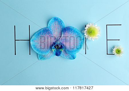 Inscription hope with orchid and white flowers on blue background
