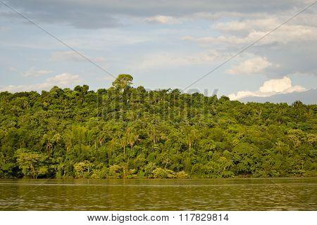 Coast of Parana River