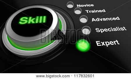 Rotary Knob With The Word Skill In Green Turned To Expert