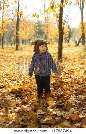 Cheerful Toddler Boy In Autumn Park