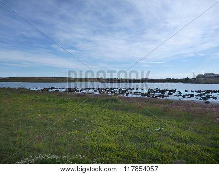 Laguna De Los Patos In Tierra Del Fuego