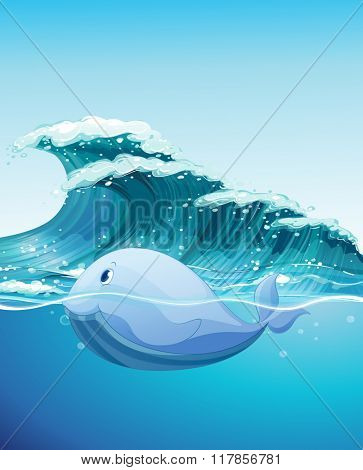 Dolphine swimming under the sea illustration