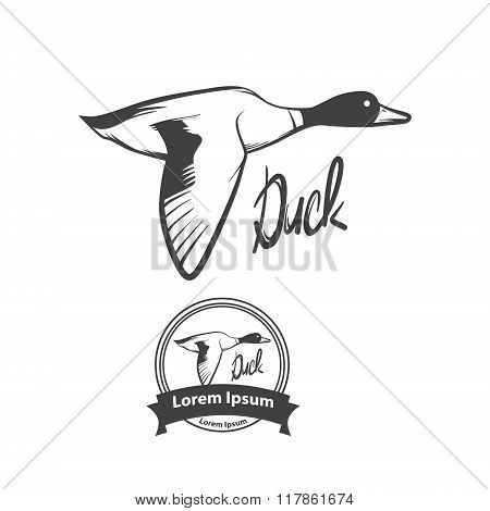 Duck Fly Logo