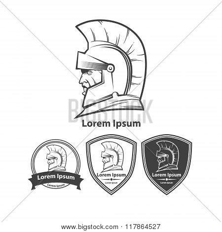 Warrior Power Profile