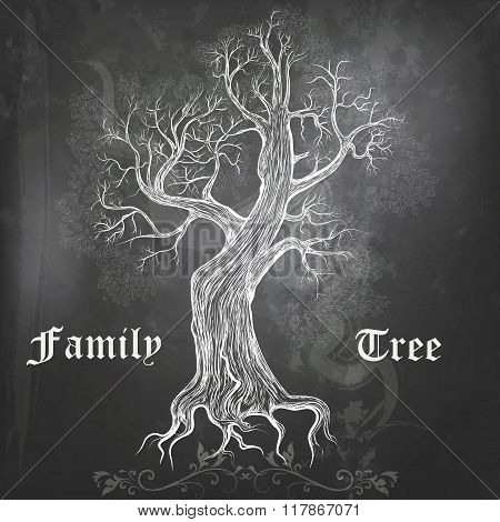 Vector Chalkboard Background With Hand Drawn Vector Oak Tree