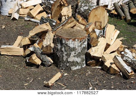 The Wood Chopping.