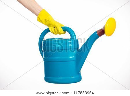 Caring For The Plants And The Garden Theme: The Human Hand In Yellow Rubber Gloves Holding A Large B
