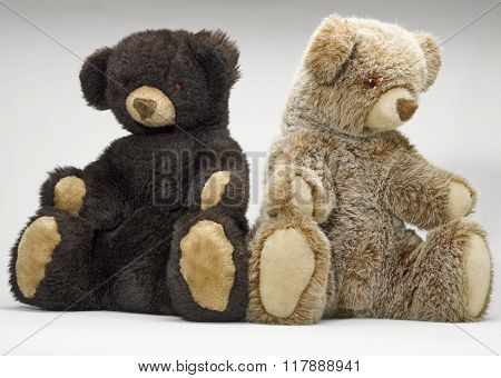 Two Small Teddy Bear Sitting