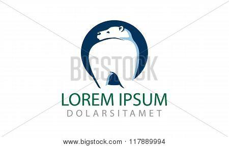 Logo or icon for dental clinic with polar bear mascot.