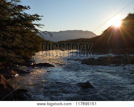 Stream In Los Glaciares Park In Patagonia