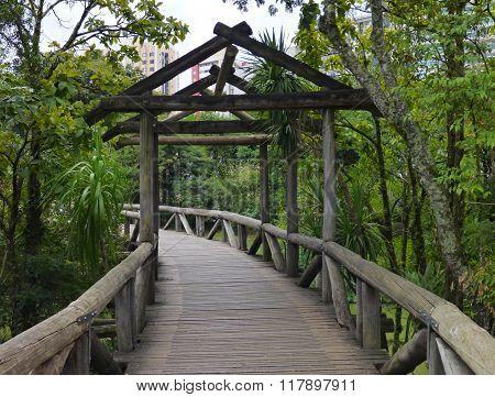 Wooden Bridge In Botanical Garden In Curitiba