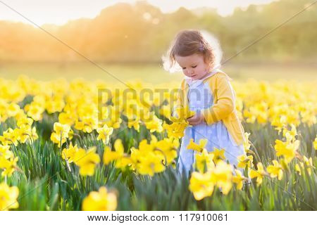 Little Girl In Daffodil Field