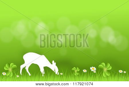 Hind On Grass