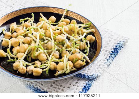 Sprouted Chickpeas For Cooking Healthy Food
