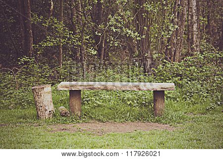 Old Bench Found In The Woods