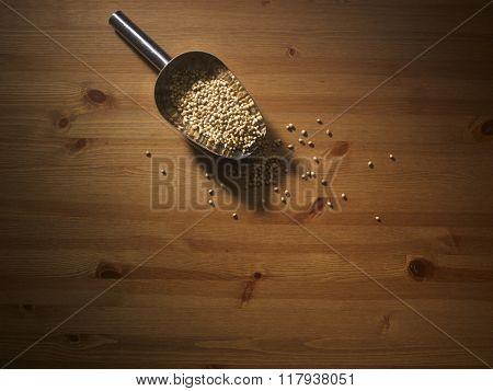 scoop of coriander seeds on wooden background