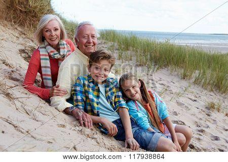 Portrait Of Grandparents With Children Sitting On Beach