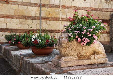 Flowers In Pots Near The Stone Sculpture Of A Lion