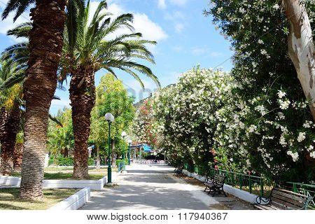 Summer Landscape, Greece.