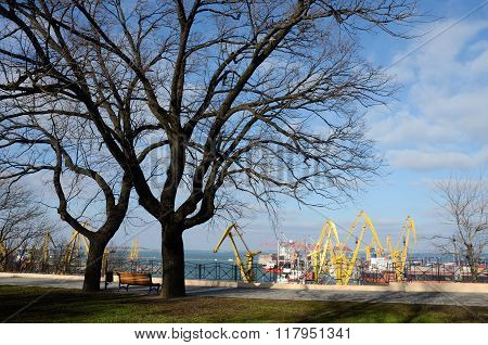 Beautiful Panorama Of Colourful Odessa Sea Port Cranes ,view From Park Shevchenko,Ukraine