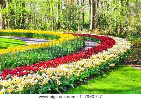 beautiful Keukenhof park with famous floral gardens in Holland
