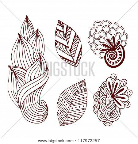 Creative nature collection in zentangle style. Hand drawn vector set with creative doodle flowers an