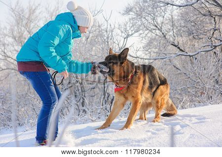 Girl trains her dog German Shepherd