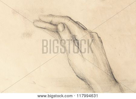 Drawing hand, pencil sketch on paper, ocre background.
