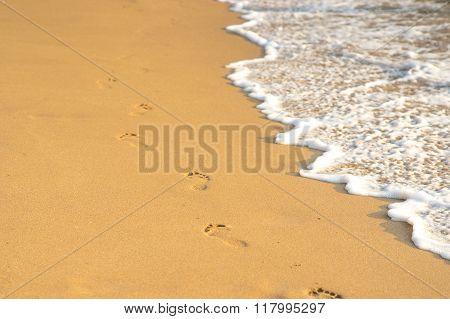 Footprints On The Golden Sand