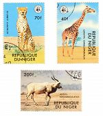 African Postage Stamps With Animals